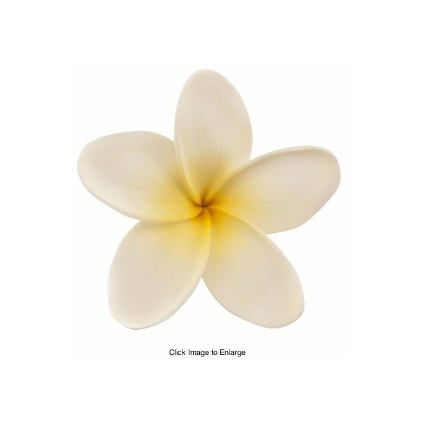 3 inch Plumeria Hawaiian Flower Hair Clip ($6.99) ❤ liked on Polyvore featuring accessories, hair accessories, flowers, fillers, flower fillers, - flowers, flower hair clip, hair clip accessories, hawaiian flower hair clip and hawaiian flower hair accessories