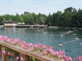 The wonderful Heviz thermal lake, Hungary.