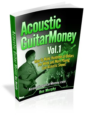 Calling All Musicians: Increase Your Income With These Techniques!  $34.95
