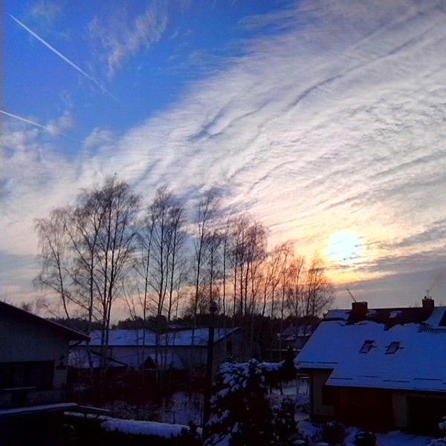 #sky #blue #sunnyday #snow #miedzyborow #mazowieckie #poland #landscape #sunlight #sunset #white #trees #house #way #plane #clouds #saturday #weekend #relax