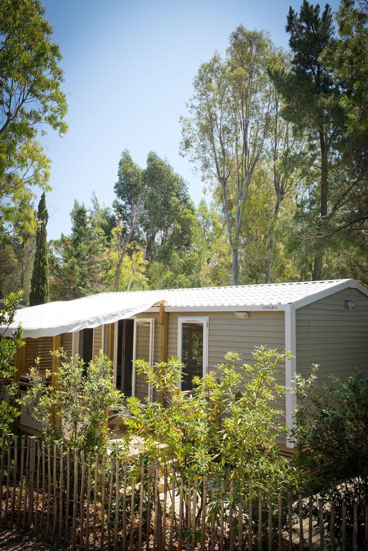 au coeur de la nature et de la végétation du camping ... découvrez des vacances en mode nature avec tout le confort de mobile-homes premium !