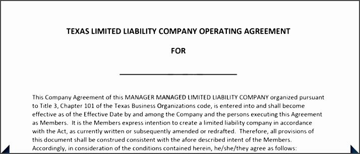 Texas Llc Operating Agreement Template Zshu Elegant Llc Operating