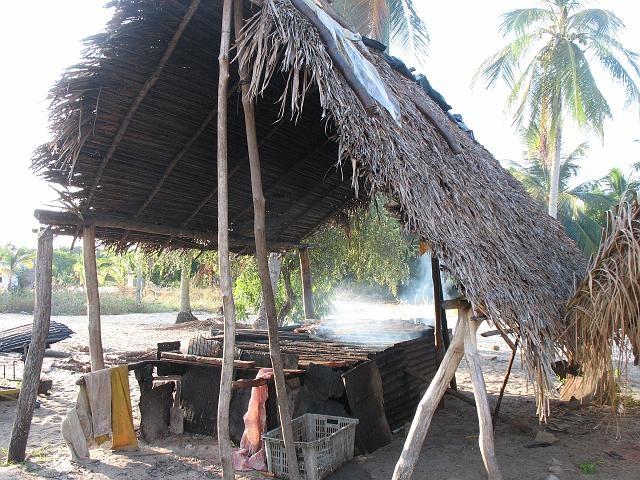 Visrokerij / Suriname
