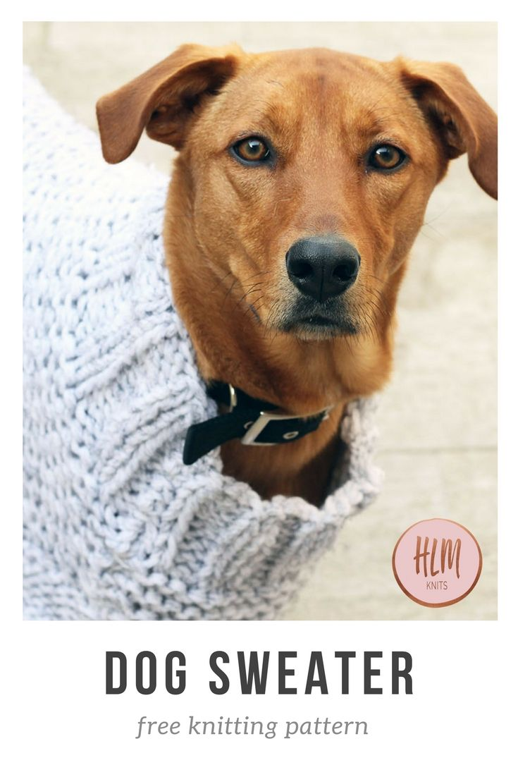 42 best Dog Sweaters images on Pinterest