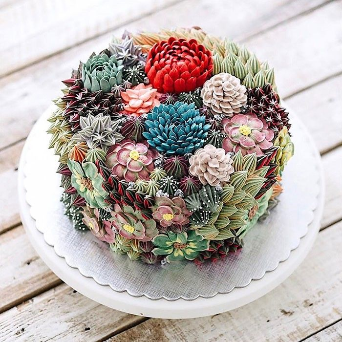 #succulent #cake #foodart