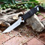 http://www.gearbest.com/fixed-blades-knives/pp_444294.html