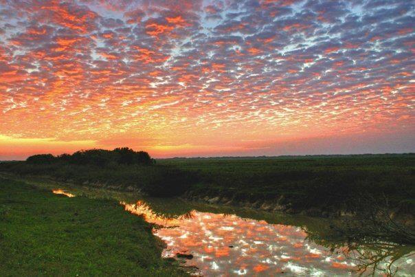 Atardecer llanero!!!  Llanos Orientales - Colombia