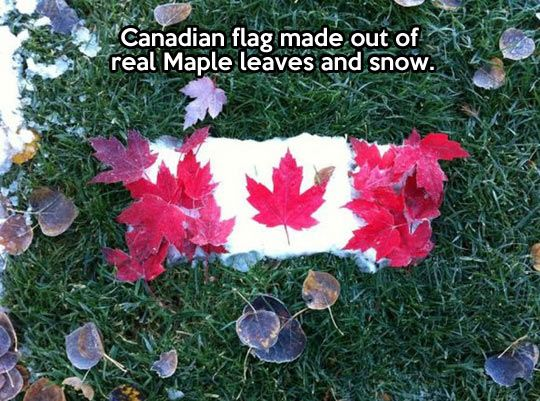 Natural Canadian flag…