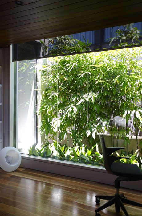 21 best images about ugly fence coverups on pinterest for Japanese indoor garden design