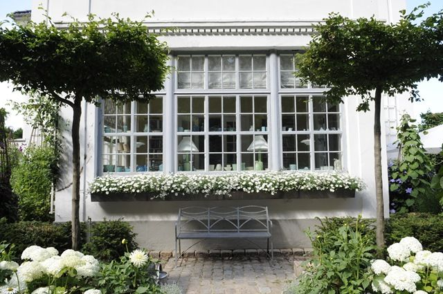 Symetrical white garden with long window box