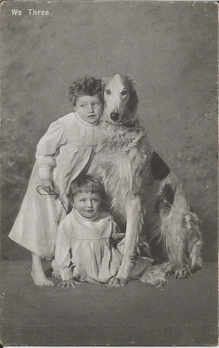 Two children and their big dog, postal card (1907).