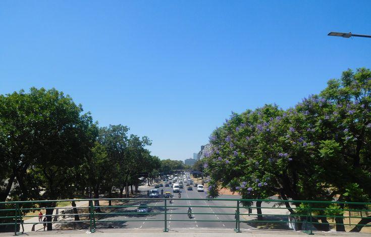 Avenida Figueroa Alcorta