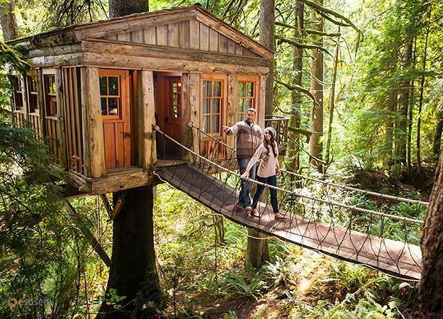 Отель на дереве – #Соединённые_Штаты_Америки #Орегон (#US_OR) Out'n'About - дома на деревьях, не отель, а сбывшаяся мечта! http://ru.esosedi.org/US/OR/1000193382/otel_na_dereve/