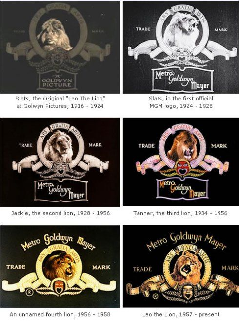 MGM - Lions through the ages