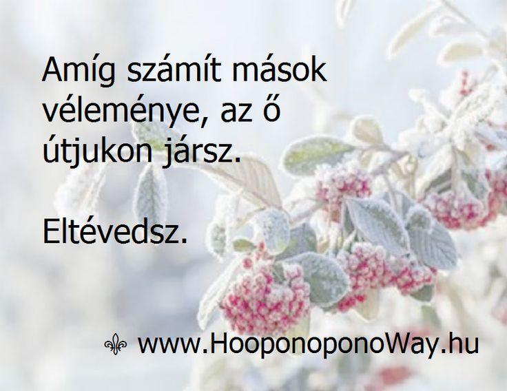 Hálát adok a mai napért. Amíg számít mások véleménye, az ő útjukon jársz. Eltévedsz. A te bölcsességed több, mint elegendő a te életedhez. Hallgass rá. Hangja a csend. Felismered. Így szeretlek, Élet! Köszönöm. Szeretlek  ⚜ Ho'oponoponoWay Magyarország ⚜ www.HooponoponoWay.hu