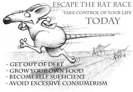 just say no to the rat race