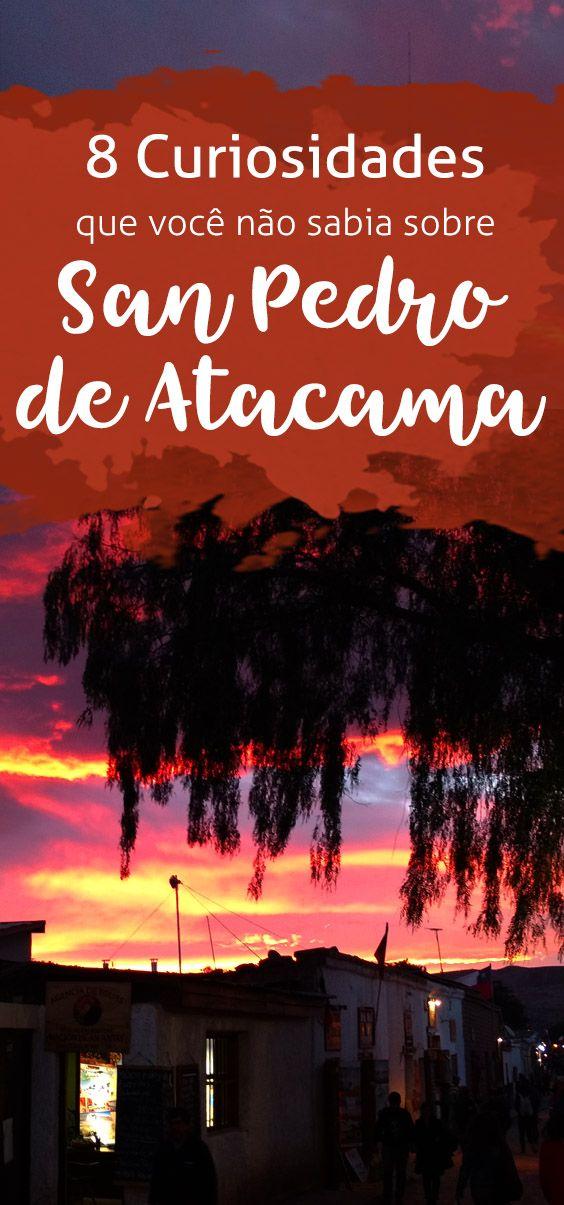 8 curiosidades sobre San Pedro do Atacama! Ladrões de múmias, festas clandestinas e plantas com benefícios, confira no blog!