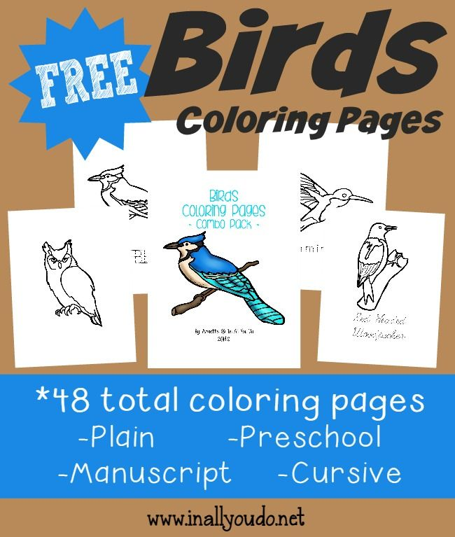 Spring will be here soon, which means birds will be returning & making their nests. These Birds Coloring Pages will be fun as they learn more about birds. :: www.inallyoudo.net