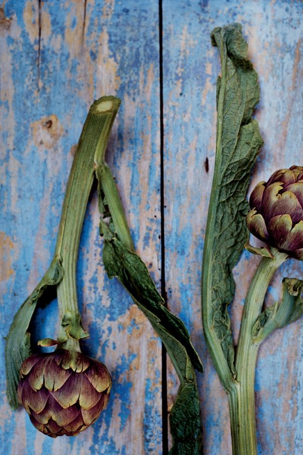 Niet mokken, zo bereid je artisjokken, ELLE Eten   How to prepare artichokes