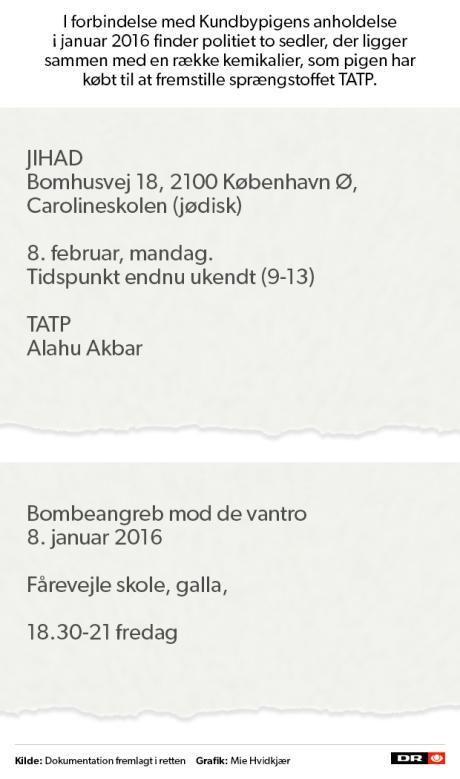 Byretten: Pigen fra Kundby skyldig i forsøg på terrorisme | Nyheder | DR