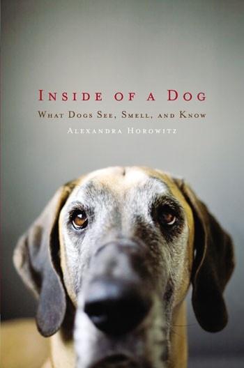 Inside Of The Dog by Alexandra Horowitz | Books Worth Reading 2012