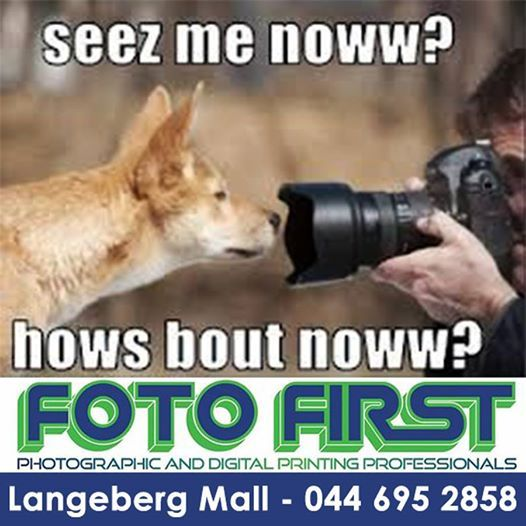 Can you see me now? #funnyfriday #fotofirst