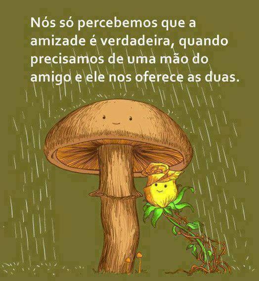 Amizade é um sentimento algo muito profundo!...