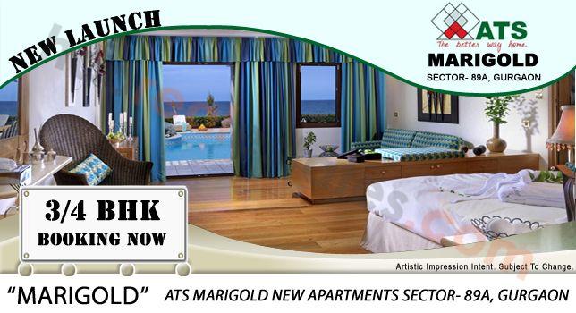 #ATS marigold # sector89A