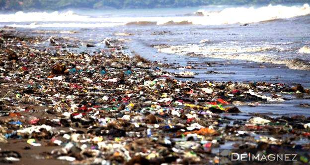 Untuk pertama kalinya para Ilmuwan mengungkapkan tentang dampak dari sampah plastik terhadap ikan-ikan dilautan, dari hasil uji laboraturium menunjukkan partikel-partikel mikroplastik menghambat penetasan telur, pertumbuhan larva, mengurangi tingkat aktivitas dan menaikkan tingkat kematian ikan.