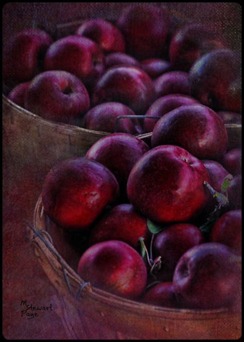 Basket of Apples ~ Art by M. Stewart Page