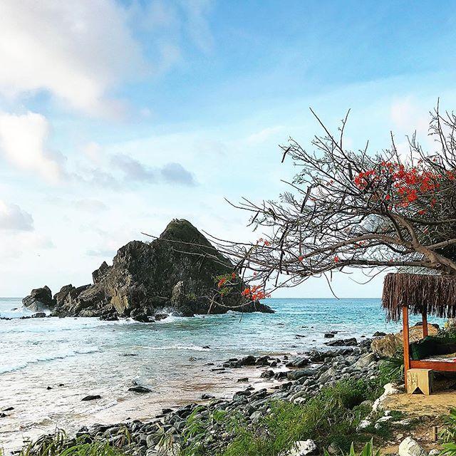 Mornings in Paradise! #Noronha  Manhãs no paraíso chamado Noronha! (Não quero ir embora daqui, e agora? Haha)