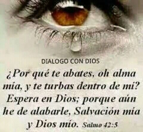 Salmo 42:5 #salmos