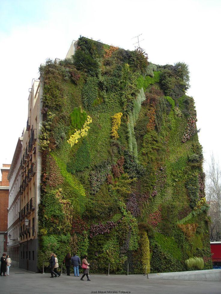 M s de 1000 ideas sobre jardines colgantes en pinterest for Jardin vertical colgante