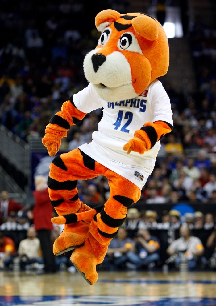Mascot Monday: University of Memphis Tigers | Surviving College