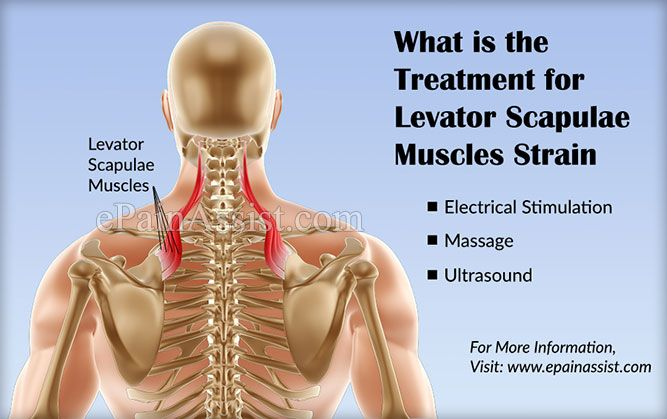 What is the Treatment for Levator Scapulae Muscles Strain or Injury?