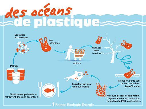Quand sac plastique rime avec déchet aquatique... - Ministère de l'Environnement, de l'Energie et de la Mer