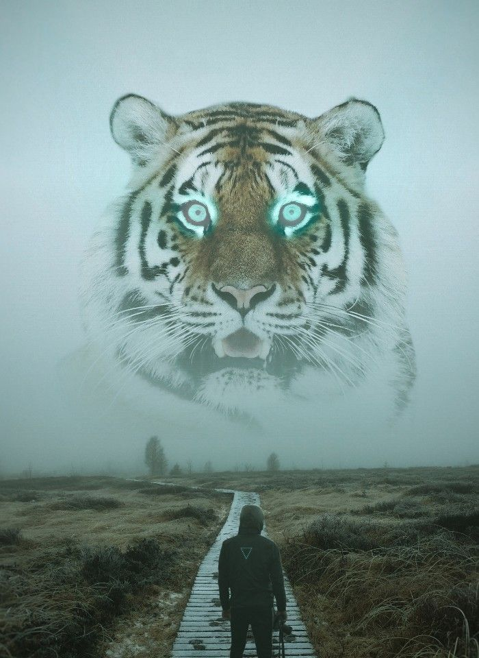 Pin By Eluney Navarrete On My Love For Tiger S In 2020 Tiger Art Animals Cat Pics