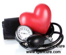 nefropatia por IgA: Como controlar a pressão sanguínea eo nível de cre...