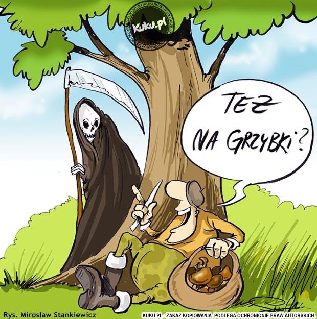 Komiksy KUKU.pl - komiksy, żarty, dowcipy rysunkowe i śmieszne rysunki