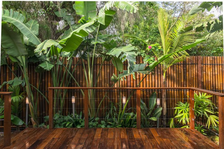 balinese garden ideas Bamboo along fence