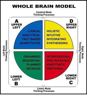 the right brain approach psychology in 2016-7-28 lobes of the human brain (frontal lobe is  rolls's stimulus-reward approach and stuss's  retrieved from  .