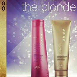 Joico Colour Endure Violet Shampoo and K-Pak Intense Hydrator Treatment