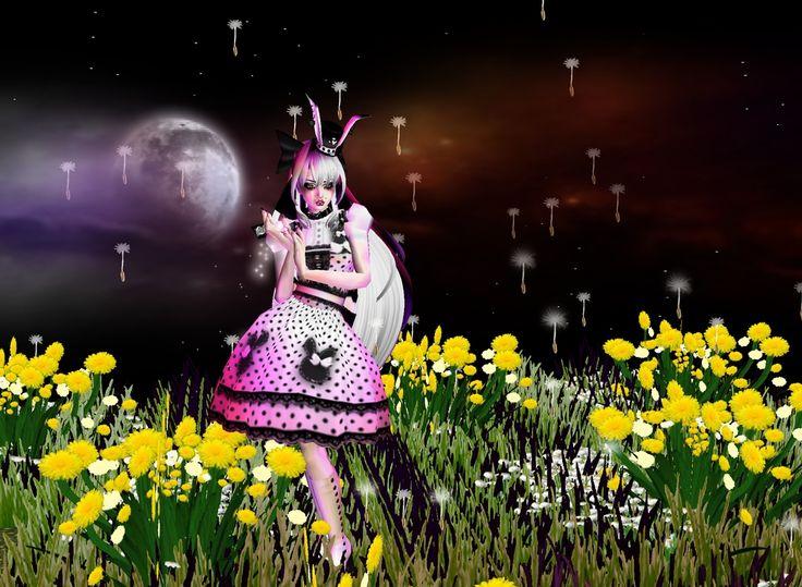 """""""Lost in Wonderland"""""""