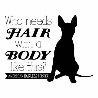American Hairless Terrier AHT Who Needs Hair With a Body Like This?