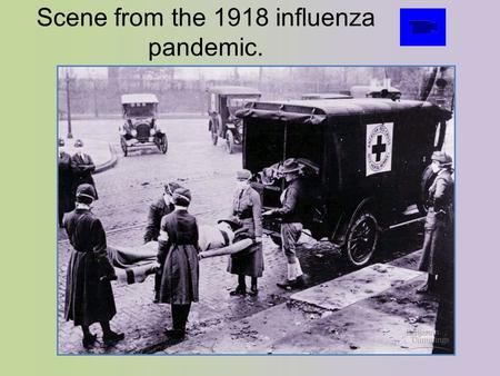 """the 1918 influenza pandemic essay Influenza pandemic 1918 essay bi 387 winter 2012 dr page shauna farmer the influenza pandemic of 1918 the history and social impact of the influenza pandemic of 1918 -1920 brought awareness and valuable information about how such a disease is spread and the care needed to survive the  flu """" but at the cost of over one third of the world."""