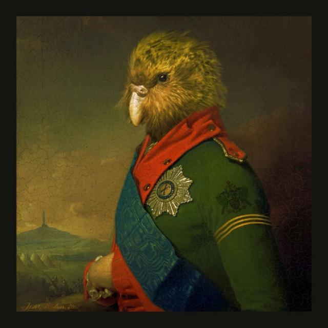 Duke Kakapo - by Julian Hindson