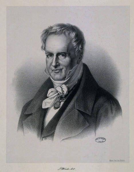 Alexander V Humboldt