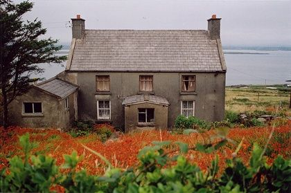 Ireland: Farms House, Celtic House, House By The Sea, Capes Clear, Households Pet, Fantastic Hmm, Molassi Ireland, Architecture Exterior, Adventure Place