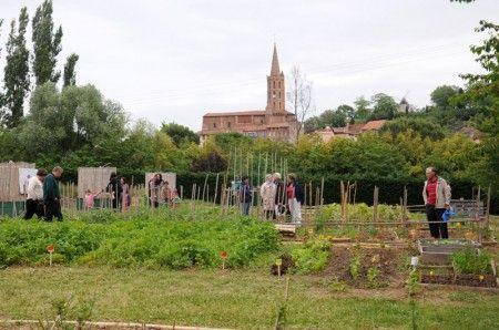 Cintegabelle, Haute-Garonne  Un jardin solidaire à Cintegabelle