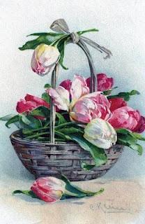 Catherine Klein ~ tulips in basket